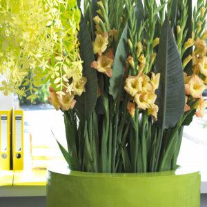 bouquet-glaïeul-jaune