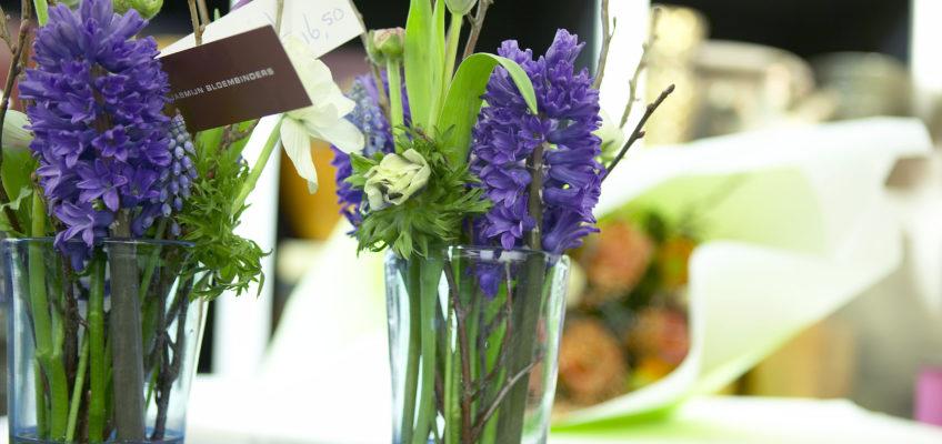 Avoir de jolies fleurs chez soi en hiver en forçant la floraison des jacinthes et des tulipes