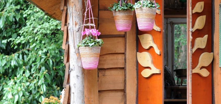Taillez les arbustes à la floraison printanière