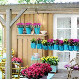 Que doit faire le jardinier en juin ?