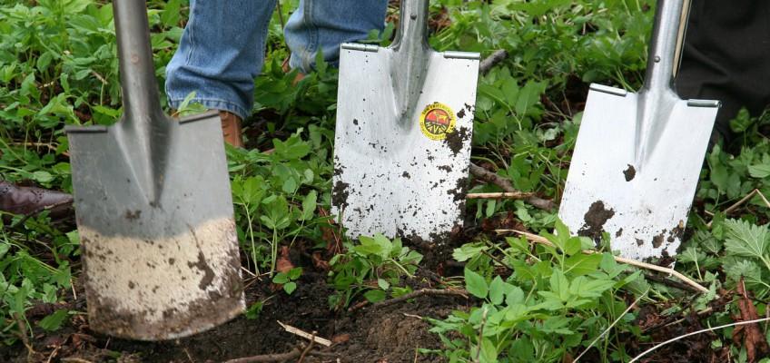 Que faire en septembre au jardin ? La liste des travaux de jardinage du mois