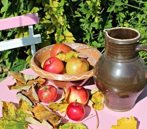 récolter-pommes-octobre