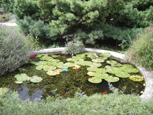 visite jardin plantes paris