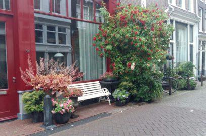 Calendrier du Jardinier : tous les travaux de jardinage à faire chaque mois