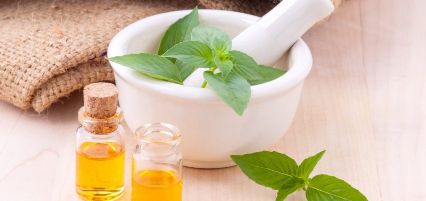 Le jardin médicinal ou comment se guérir avec les plantes