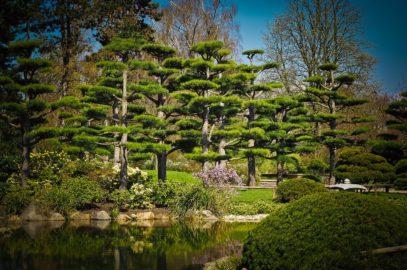 Créer un jardin zen ou jardin japonais