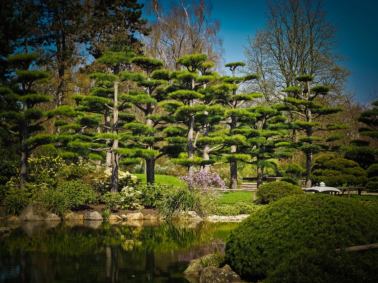 Creer Un Jardin Zen Ou Jardin Japonais