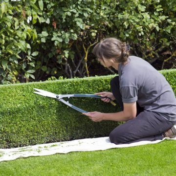 Espaces verts : quels vêtements professionnels nécessaires pour un jardinier ?