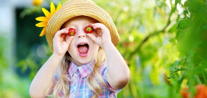 Les traitements bio pour votre jardin