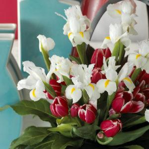 bouquet tulipe hollande