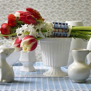 bouquet tulipe hollandais