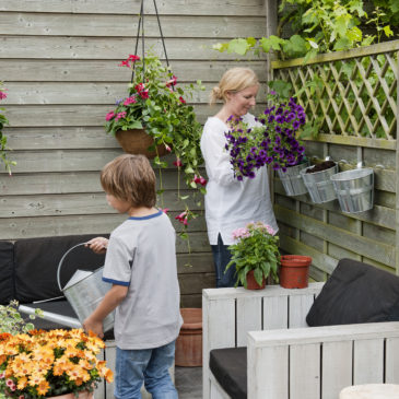 Les meilleurs pratiques pour jardiner bio - Conseils pratiques