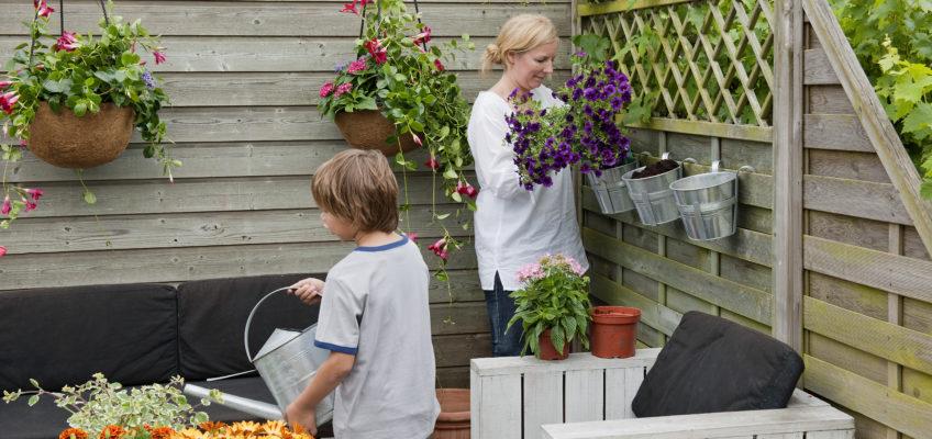 Quel type de plantes pour embellir votre terrasse en bois ?