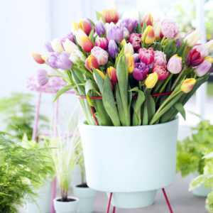 bouquet-tulipe-coloré-1