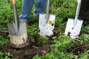 travaux-jardiner-septembre