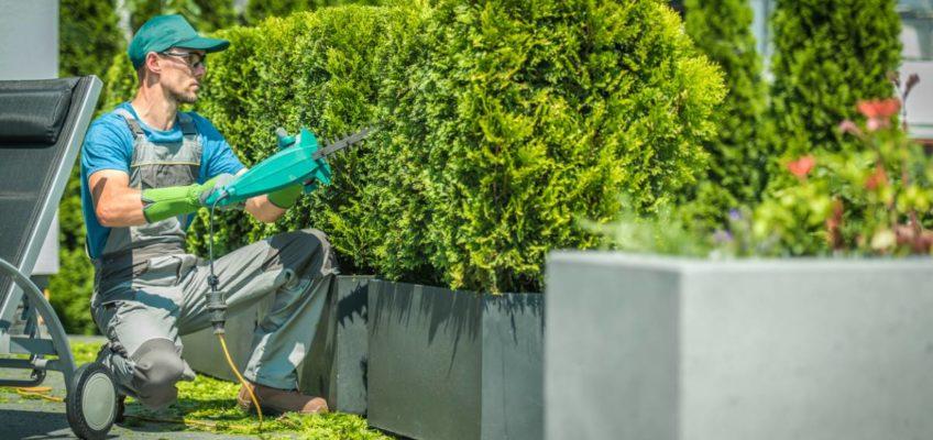Pourquoi faire appel à un paysagiste : 7 raisons pratiques