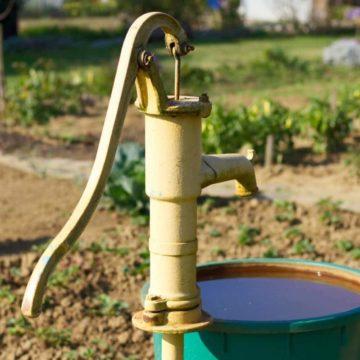 Comment irriguer le jardin de façon économe ?