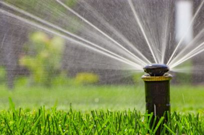 Quand la technologie s'invite dans votre jardin