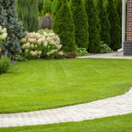 Essonne : créer une allée de jardin